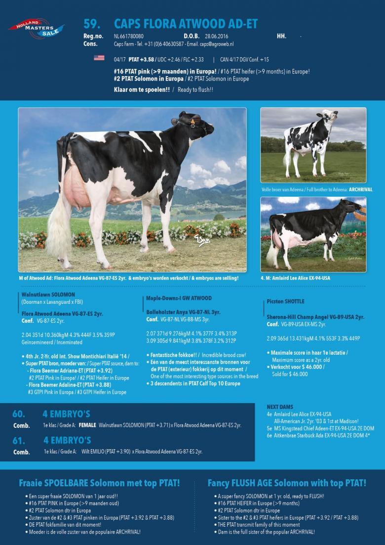 Datasheet for #4 Embryos: FEMALE Walnutlawn SOLOMON x Flora Atwood Adeena VG-87-ES 2yr.