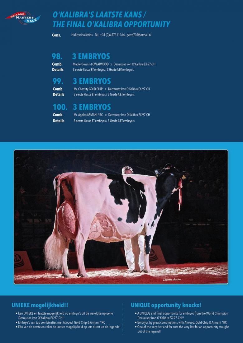 Datasheet for #3 Embryos: Mr Chassity GOLD CHIP x Decrausaz Iron OKalibra EX-97-CH