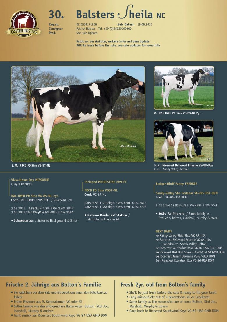 Datasheet for Lot 30. Balsters Sheila NC