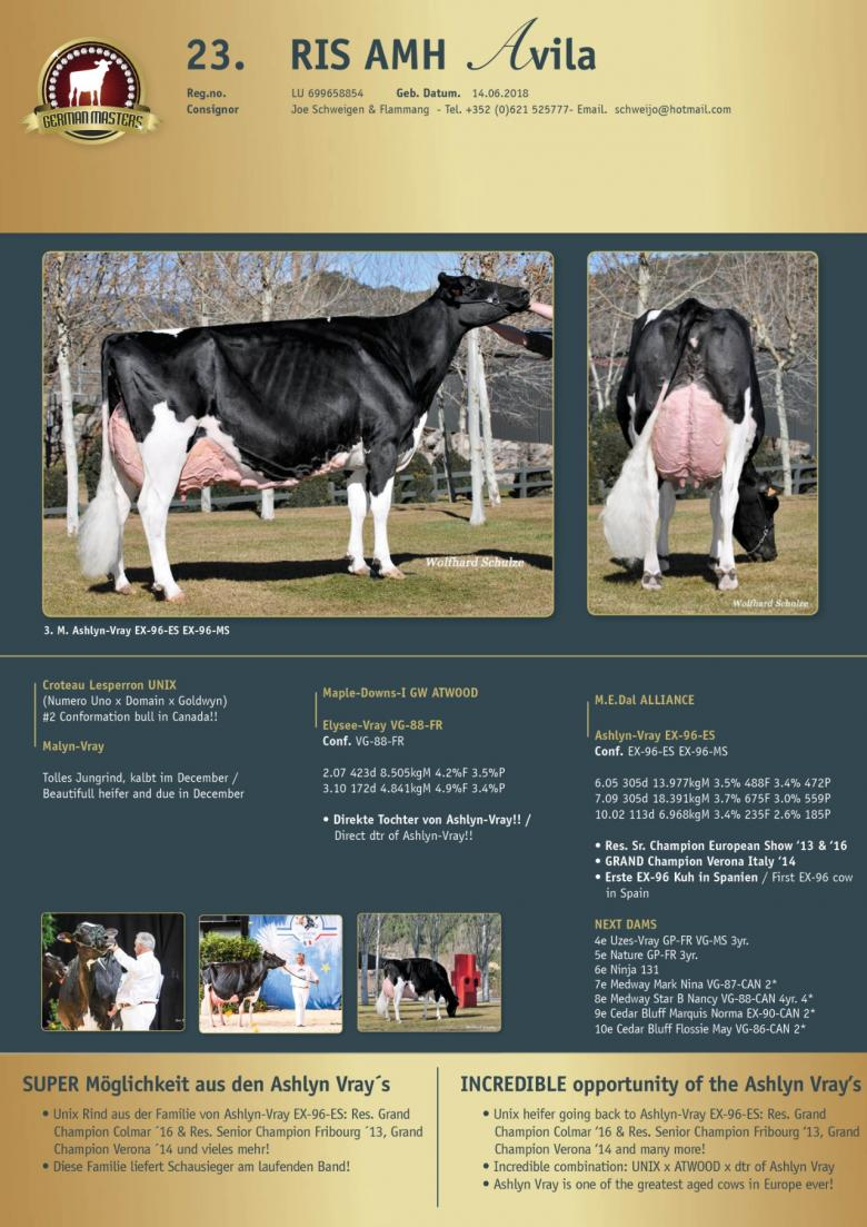 Datasheet for Lot 23. RIS AMH Avila