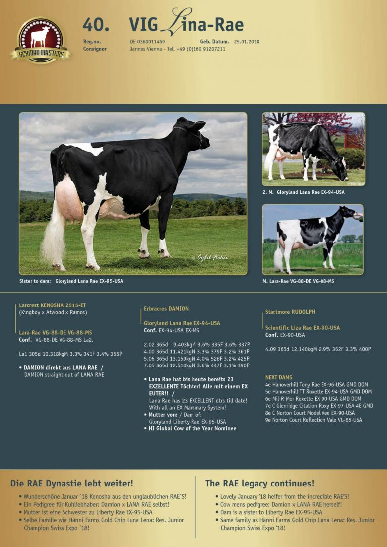 Datasheet for Lot 40. VIG Lina-Rae