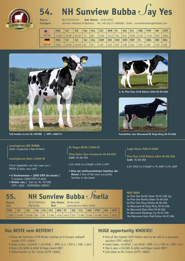 Datasheet for Lot 55. NH Sunview Bubba Sheila