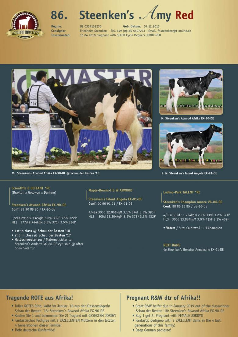 Datasheet for Lot 86. Steenkens Amy Red