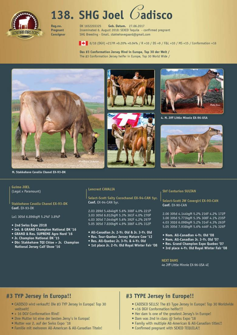 Datasheet for Lot 138. SHG Joel Cadisco | Out of sale