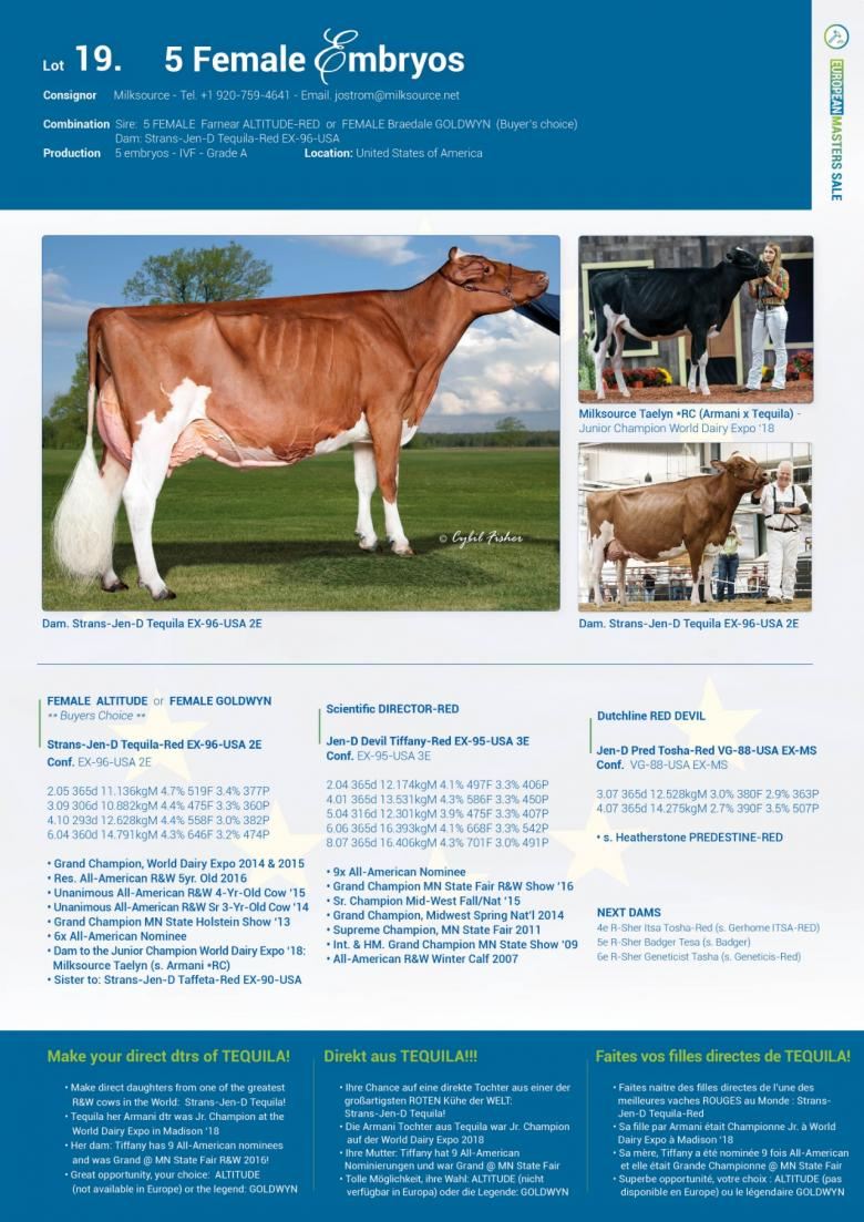 19 — Lot 19  5 FEMALE embryos - Live Dairy Auctions