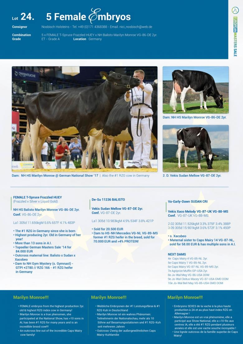 24 — Lot 24  5 FEMALE embryos - Live Dairy Auctions