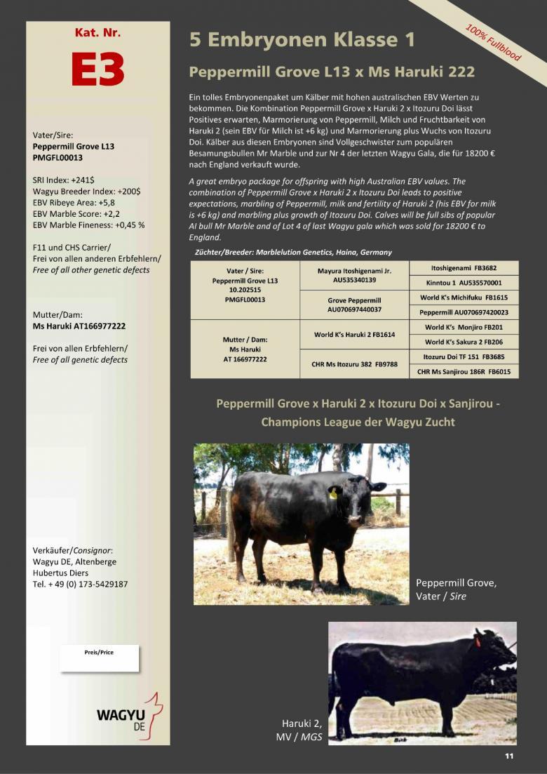 Datasheet for Lot E3. 5 embryos (Grade A) Peppermill Grove L13 x Ms Haruki 222