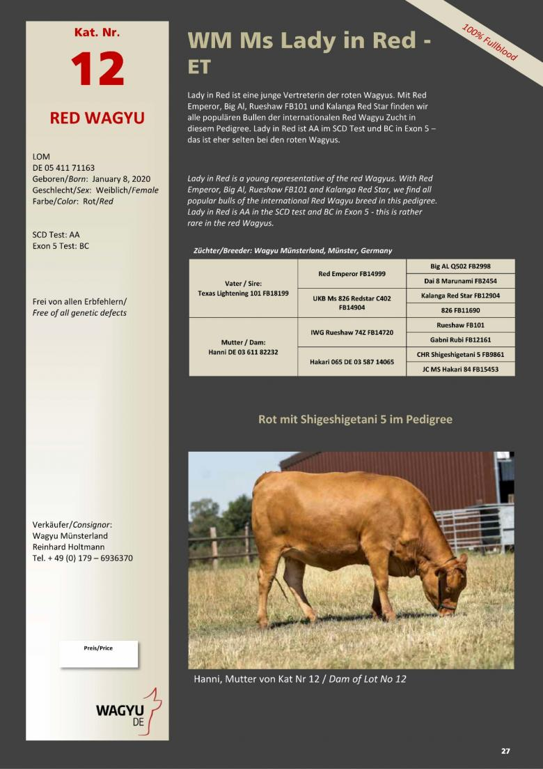 Datasheet for Lot 12. WM Ms Lady in Red-ET