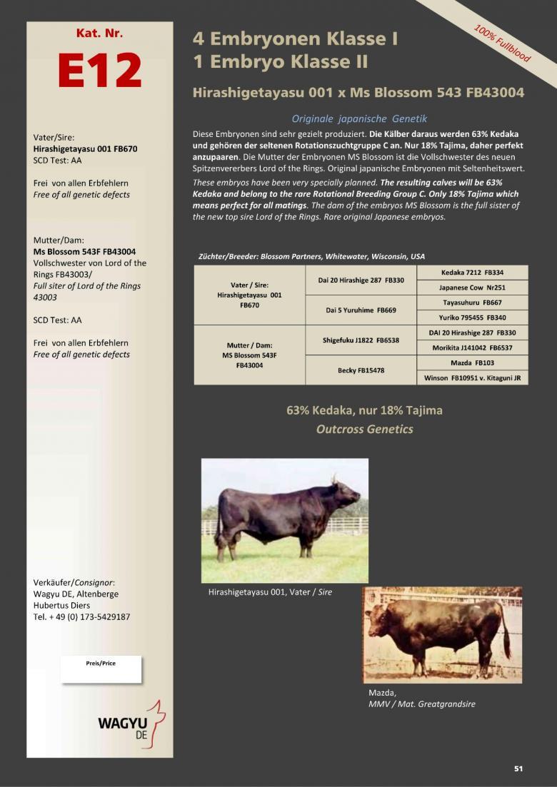 Datasheet for Lot E12. 5 embryos (#4 Grade A/ #1 Grade B) Hirashigetayasu 001 x Ms Blossom 543 FB43004